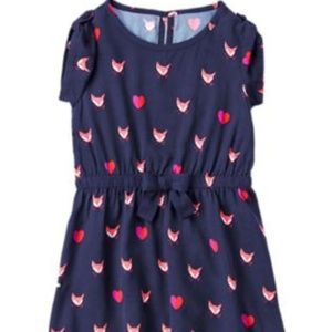 Gymboree Woodland Wonder Fox Blue Dress Size 6